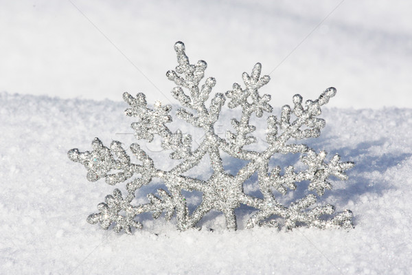 beautiful silver snowflake in snow Stock photo © photochecker