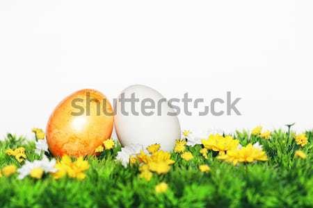 Osterei Dekoration Ostern nice Zeit Blume Stock foto © photochecker