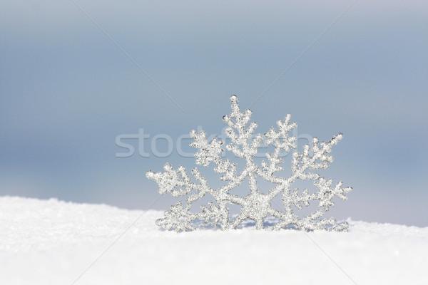 Schneeflocke Schnee schönen Silber Textur Natur Stock foto © photochecker