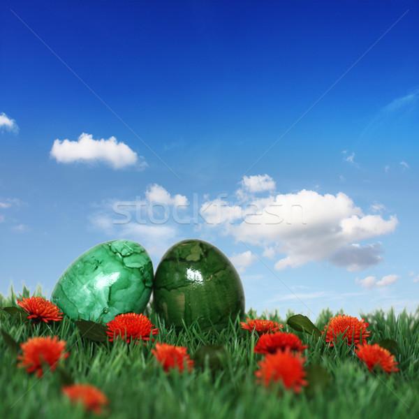 Grünen Eier nice Dekoration Ostern Zeit Stock foto © photochecker