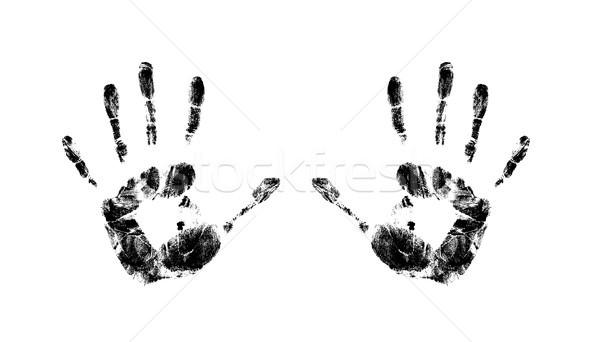 Viele Design malen Palmen Zeichen Stock foto © photochecker