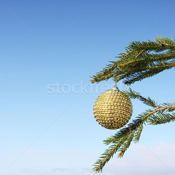 Weihnachtsbaum Dekoration Weihnachten Spielerei Winter blau Stock foto © photochecker