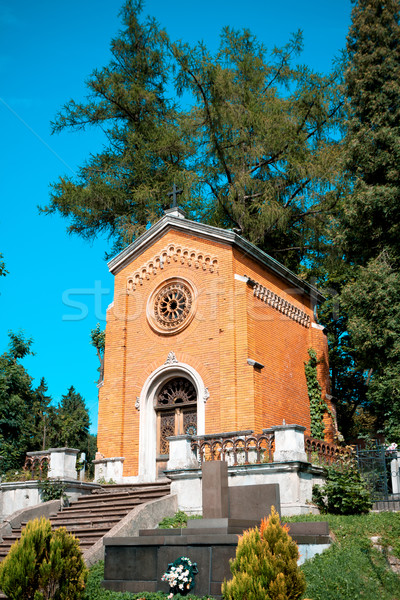 old crypt in the cementery Stock photo © Photocrea