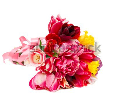 Bouquet of spring tulips isolated on white Stock photo © Photocrea