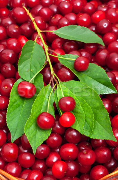 ripe cherries in the basket background Stock photo © Photocrea