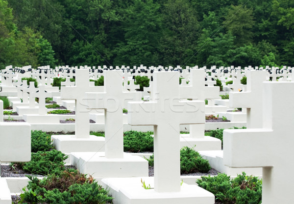 military cemetery Stock photo © Photocrea