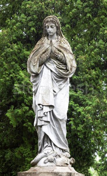 статуя девственница саду трава лист зеленый Сток-фото © Photocrea