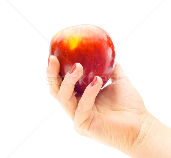 Apple in hand isolated on white Stock photo © Photocrea