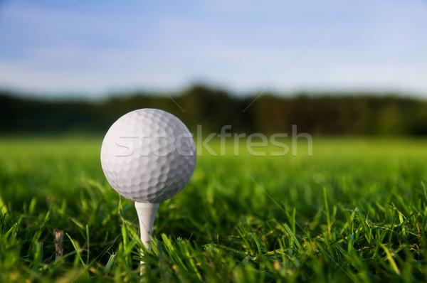 Сток-фото: мяч · для · гольфа · зеленая · трава · Blue · Sky · небе · спорт · пейзаж