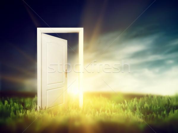 Open deur groene veld nieuwe manier entree Stockfoto © photocreo