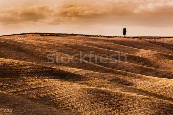 Toszkána mezők ősz tájkép Olaszország aratás Stock fotó © photocreo