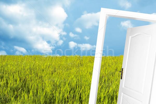 Door to the new world Stock photo © photocreo