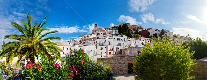 Panorama of Ibiza, Spain Stock photo © photocreo
