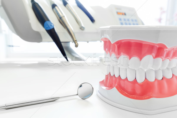 Clean teeth dental jaw model, mirror and dentistry instruments in dentist's office.  Stock photo © photocreo