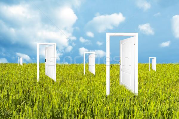 Doors to the new world Stock photo © photocreo