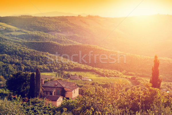 Vineyard and farm house, villa in Tuscany, Italy at sunset Stock photo © photocreo