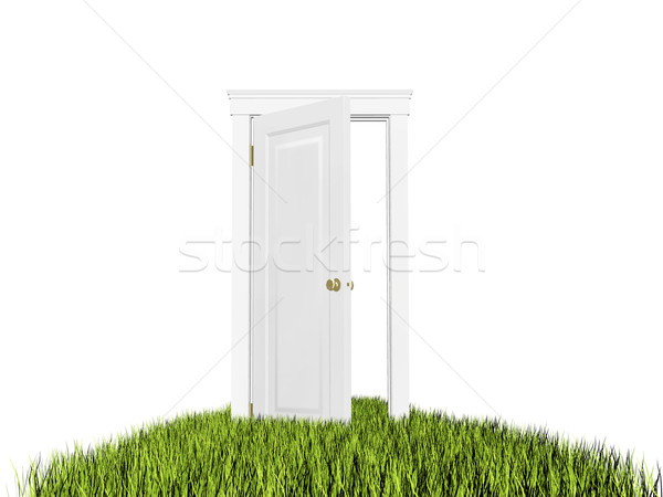 Open deur nieuwe wereld gras tapijt witte Stockfoto © photocreo