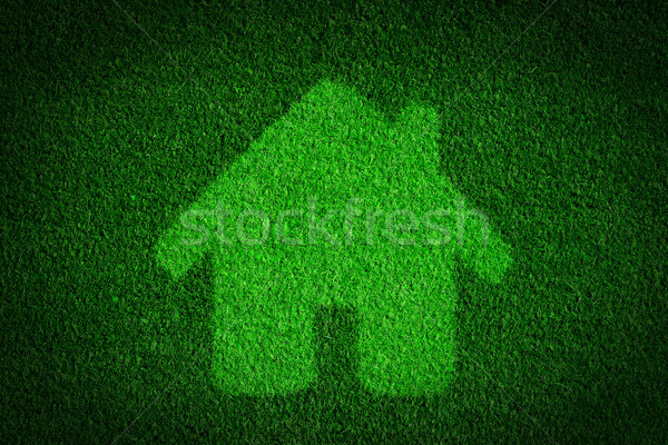 Green, eco friendly house, real estate concept. Stock photo © photocreo