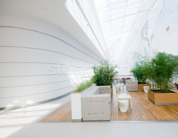 Moderno negócio interior espaçoso limpar madeira Foto stock © photocreo