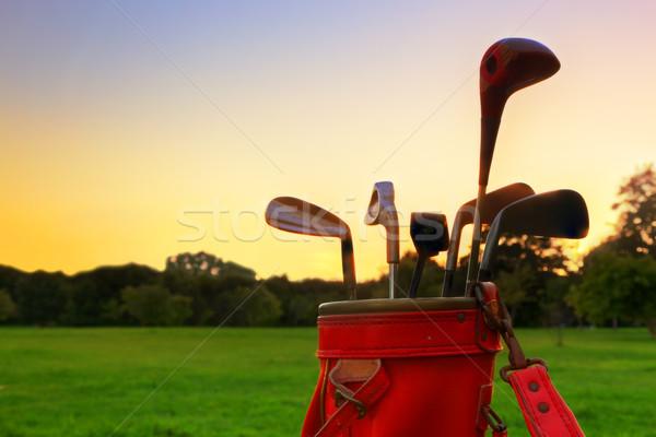 Golf uitrusting professionele golfclubs zonsondergang leder Stockfoto © photocreo