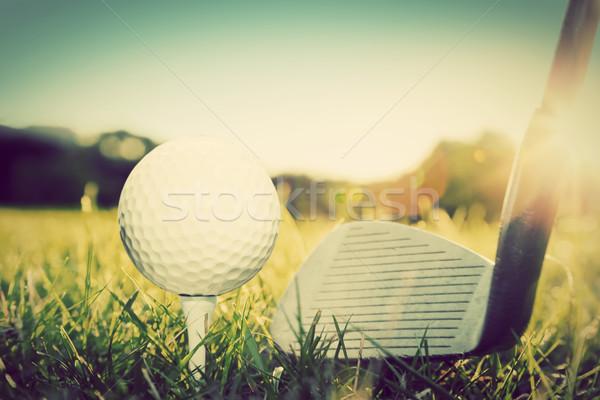 играет мяч для гольфа гольф клуба Vintage ретро-стиле Сток-фото © photocreo