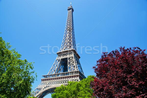 Eiffel Tower, Paris, France Stock photo © photocreo