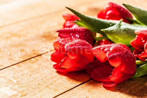 Zdjęcia stock: świeże · czerwony · tulipan · kwiaty · bukiet · drewna