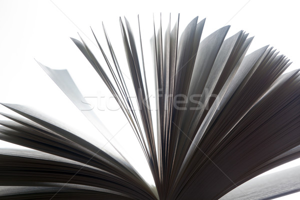 Open book, pages fluttering. Black and white Stock photo © photocreo