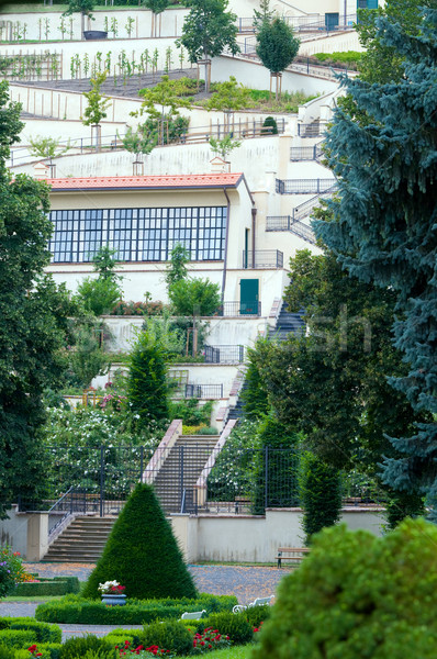 Prague Castle Gardens Stock photo © photocreo