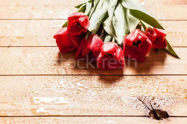 Friss piros tulipán virágok virágcsokor fa Stock fotó © photocreo