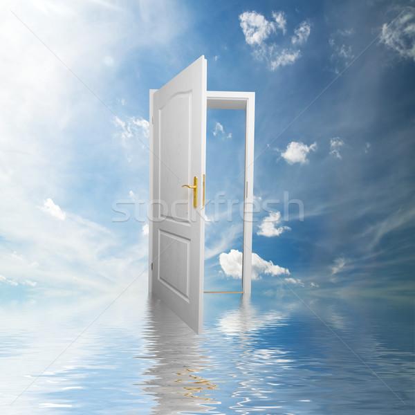 Door to new world. Hope, success, new way concepts Stock photo © photocreo