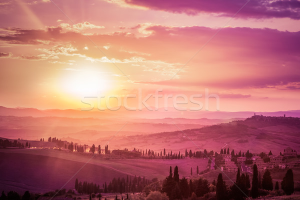 Wonderful Tuscany landscape with cypress trees, farms and medieval towns, Italy. Pink and purple sun Stock photo © photocreo