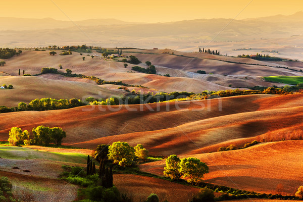 Stok fotoğraf: Toskana · manzara · gündoğumu · İtalya · alanları
