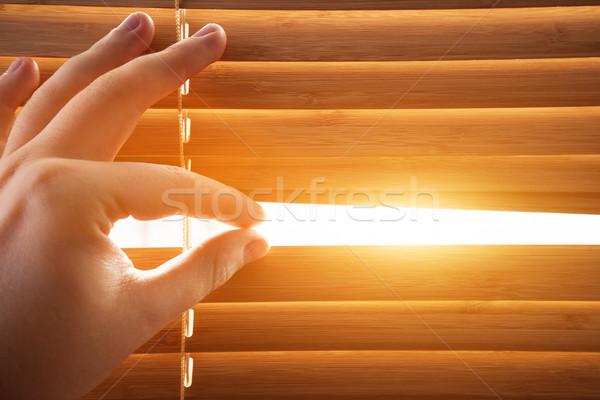 Looking through window blinds, sun light coming inside. Stock photo © photocreo