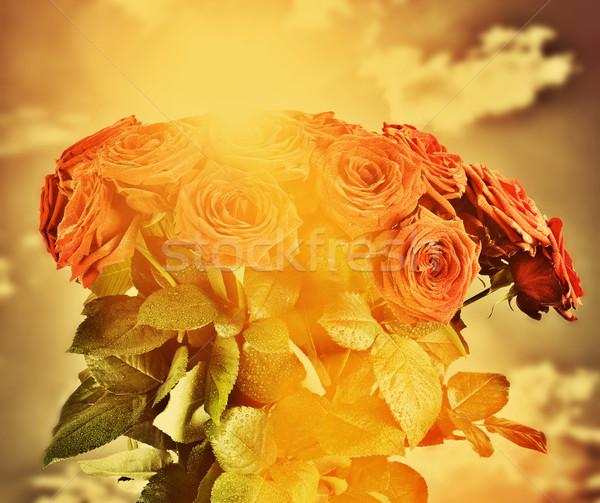 Piros nedves rózsák virágok virágcsokor égbolt Stock fotó © photocreo