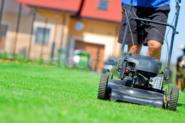 Mowing the lawn Stock photo © photocreo