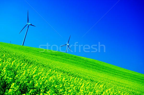 Szélturbinák energia gyönyörű legelő felhők fű Stock fotó © photocreo