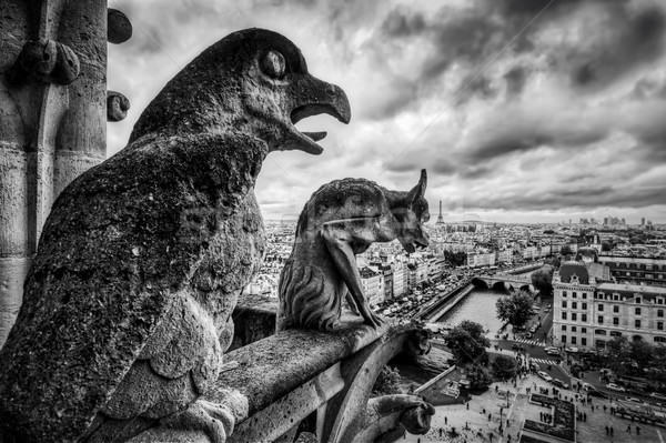 Stok fotoğraf: Paris · Fransa · siyah · beyaz · ufuk · çizgisi · karanlık