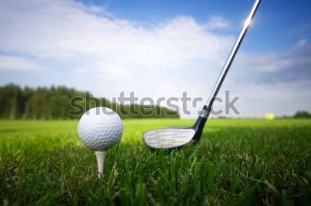 играет гольф клуба мяча небе спорт Сток-фото © photocreo