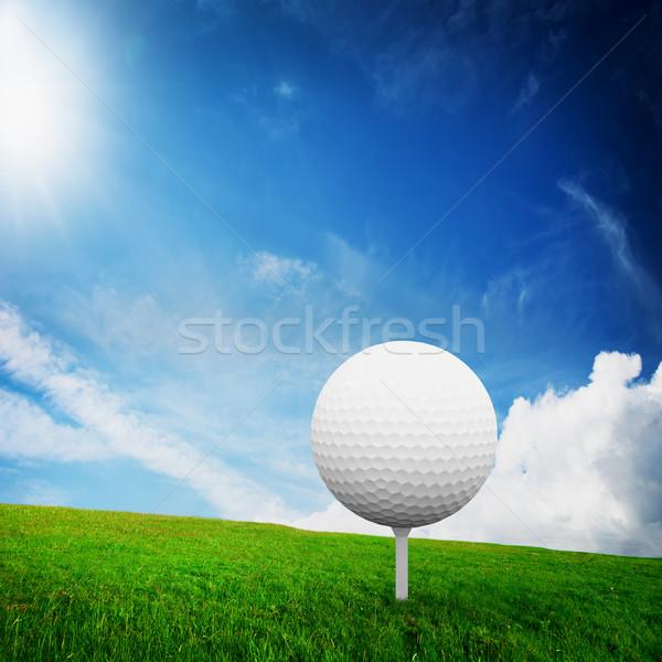 Spelen golfbal groene golf veld zonnige Stockfoto © photocreo
