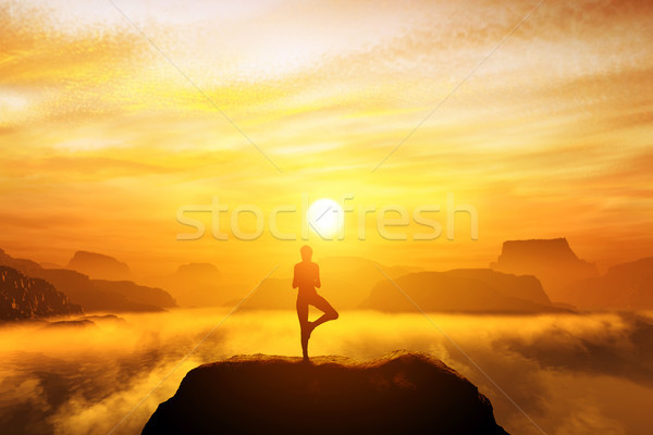 Woman meditating in tree yoga position on the top of a mountains Stock photo © photocreo