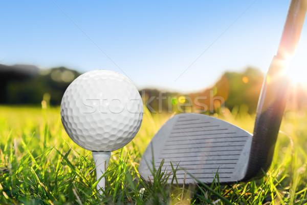 Piłeczki do golfa biały golf klub shot zielona trawa Zdjęcia stock © photocreo
