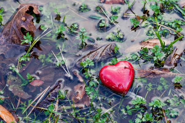 Rot Herz Wasser Pfütze Gras Moos Stock foto © photocreo