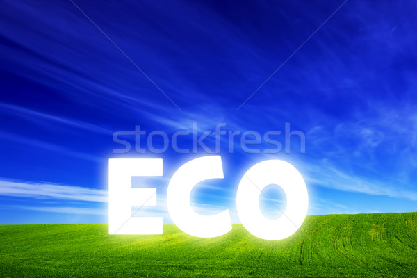 Spring field of fresh green grass with glowing Eco caption Stock photo © photocreo