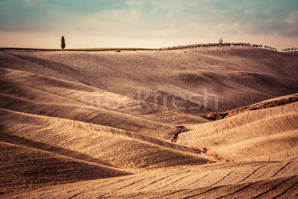 Stockfoto: Toscane · velden · najaar · landschap · panorama · Italië