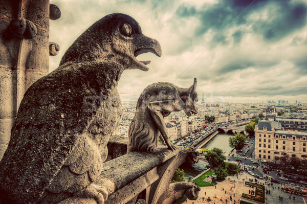 Gargoyles and chimera statues of Notre Dame over Paris, France. Vintage Stock photo © photocreo