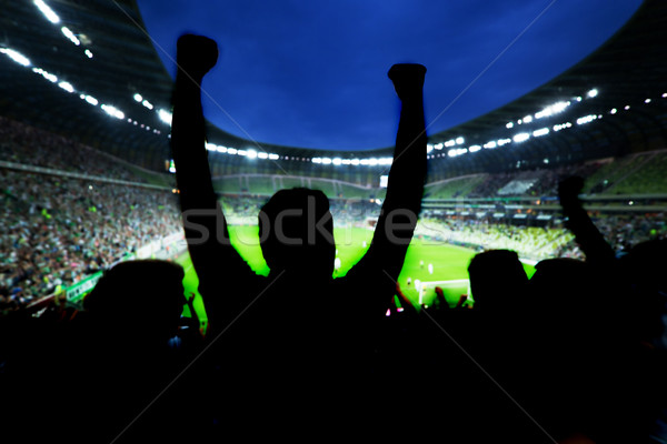 Football, soccer fans support their team and celebrate Stock photo © photocreo