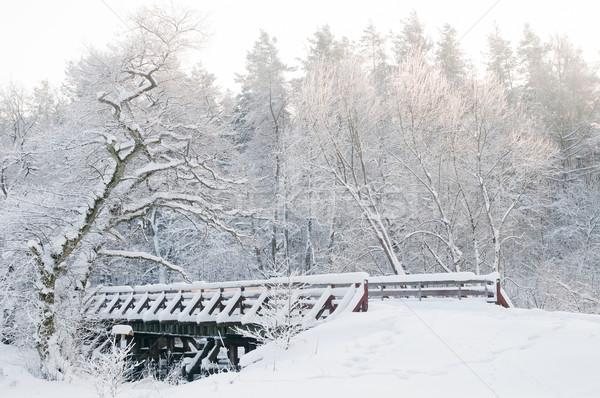 Winter scenery. Fairytale forest, bridge, snowy trees Stock photo © photocreo