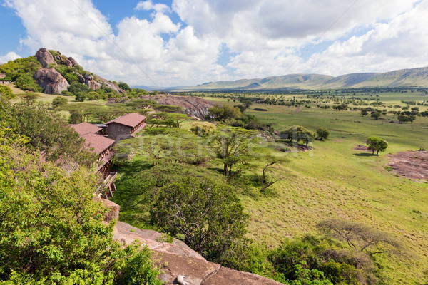 Turista szavanna Tanzánia Afrika tájkép Serengeti Stock fotó © photocreo