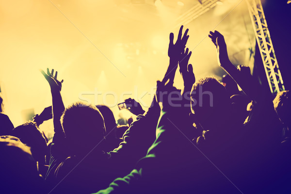 Concert, disco party. People with hands up in night club. Stock photo © photocreo